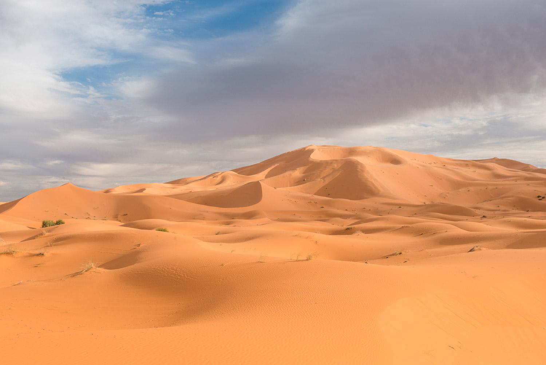 sahara-sand-dsc0416-edit-v-2-web